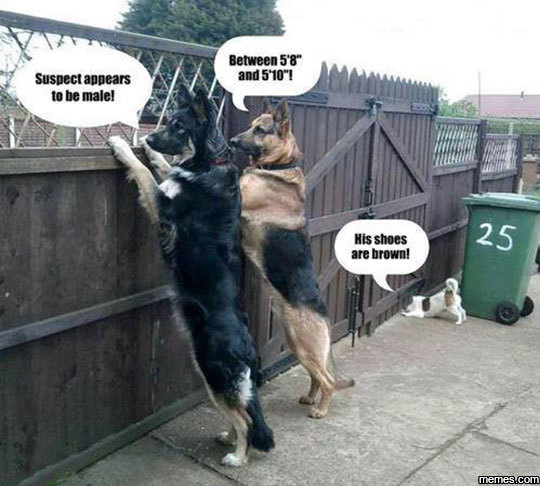 Fence dogs